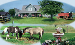 Songbird Ridge Bed & Breakfast - Shipshewana